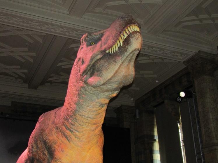394. London - Natural History Museum.JPG